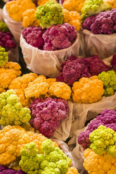 Canada, Quebec, Montreal. Little Italy, Marche Jean Talon Market, multi-colored
