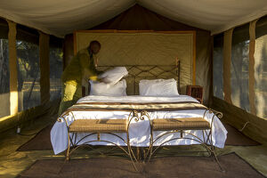new/20191004 jai 5/safari camp interior masai mara kenya